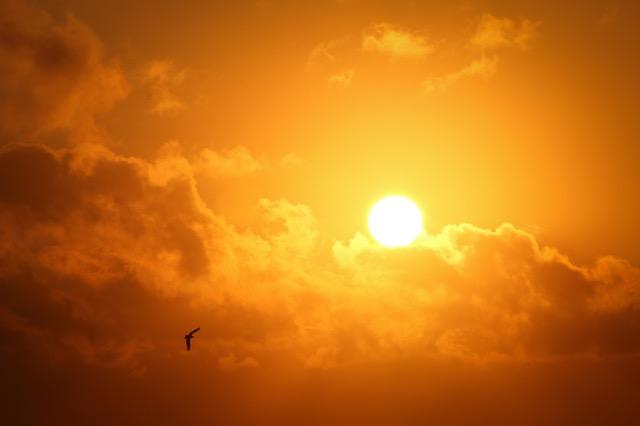 Neue Zeitqualität im Jahr der Sonne (2017) von Astrologin Alina del Sol